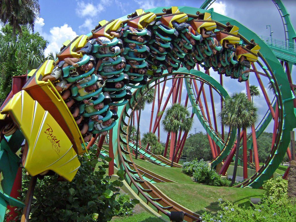 roller coast Top 100 roller coasters: the coasterbuzz 100 the coasterbuzz 100 is a listing of the top 100 roller coasters as decided by members of coasterbuzz.