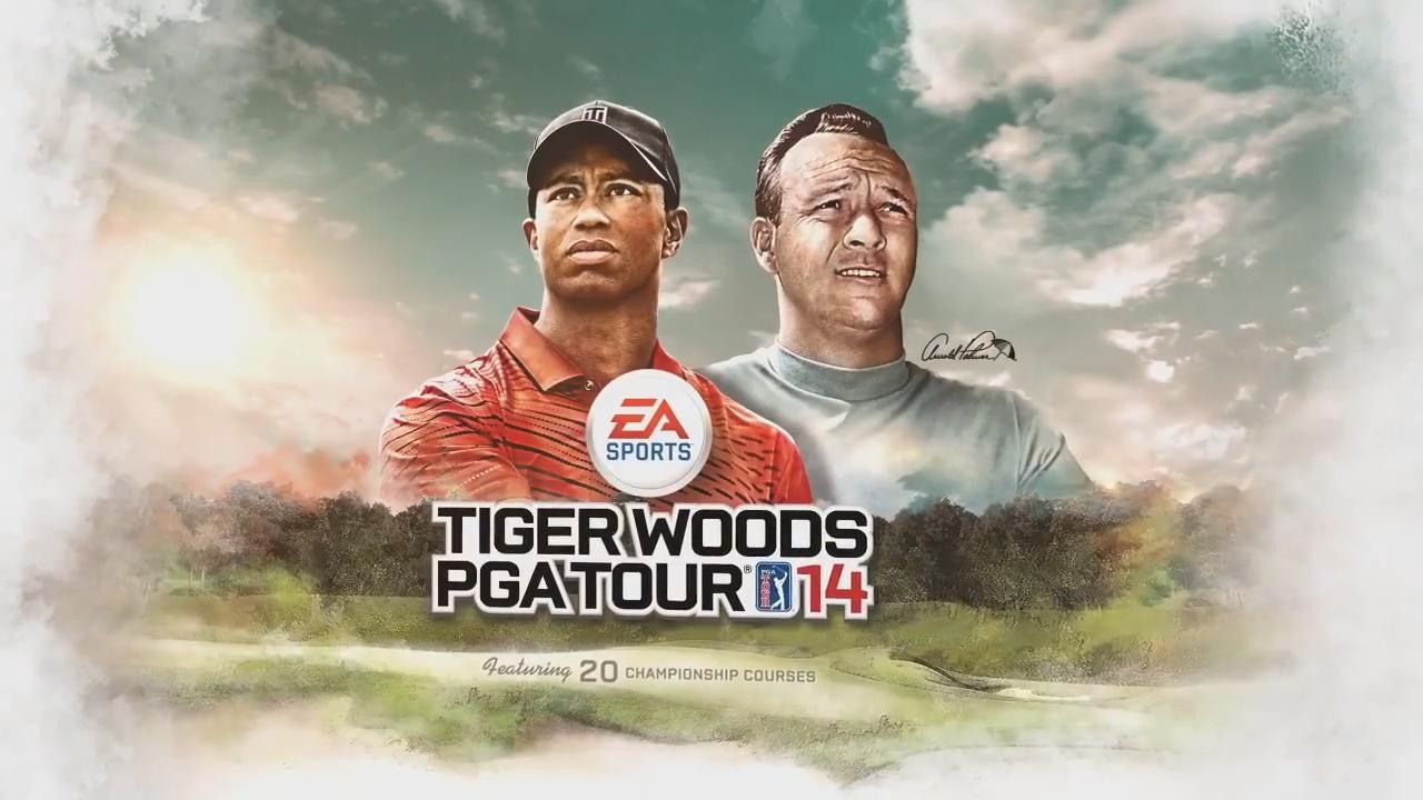 Tiger Woods Pga Tour  Wii Game