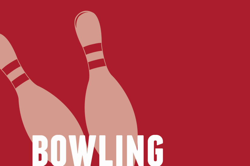 Brunswick Pro Bowling Coming To WiiU