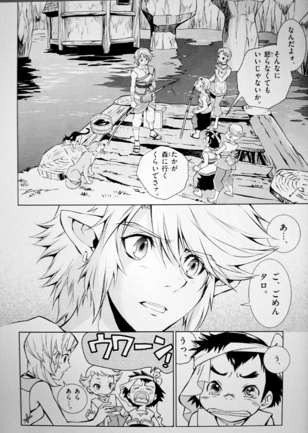 the_legend_of_zelda_twilight_princess_manga