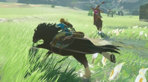 Link doing what he does best.
