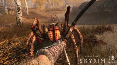 The_Elder_Scrolls_V_Skyrim_for_nintendo_switch_8