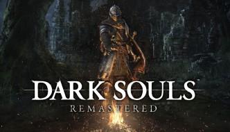 dark souls remastered coop