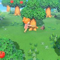 Video: Animal Crossing New Horizons developers reveal what they would bring to a deserted island